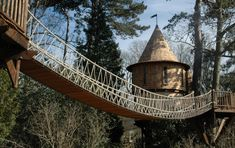 amazing tree houses of the world - Google Search