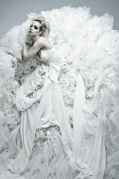 Rose-Style, angelagilltrap: SHOT: Fabulous Fashion