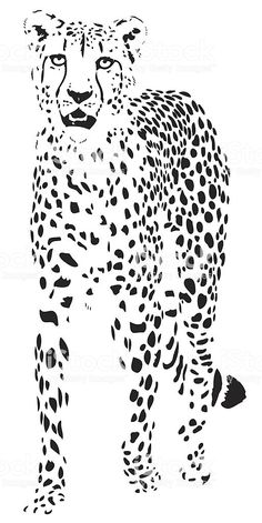 beautiful cheetah portrait illustration in black lines : Cheetah vector royalty-free cheetah vector stock vector art & more images of cheetah Animal Stencil, Stencil Art, Cheetah Drawing, Negative Space Art, Arte Tribal, Free Vector Art, Vector Vector, Vector Stock, Stencil Patterns