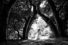 Photo by Evert  Doorn of October24 on Worldwide Wedding Photographers Community