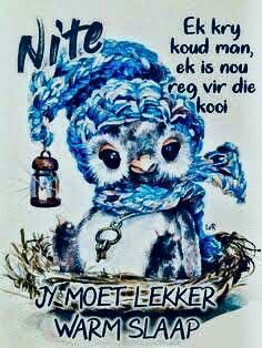 Good Night Massage, Goeie Nag, Goeie More, Afrikaans Quotes, Good Night Sweet Dreams, Good Night Quotes, Special Quotes, Sleep Tight, Qoutes