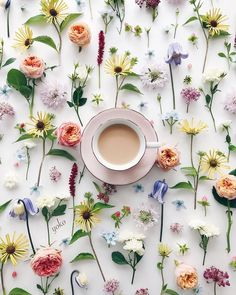 How do you like your coffee? We prefer ours with flowers. Enjoy The Little Things, All Things Cute, Coffee Photography, Flower Tea, Tea Art, Coffee And Books, Pretty Flowers, Peace And Love, Tea Time