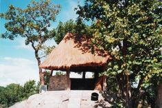 Zambia social insaka on top of a termite mound