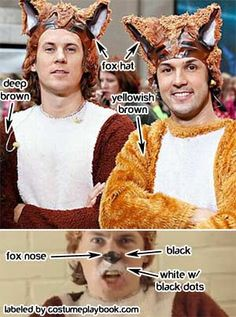 Costume for Ylvis' Fox Song