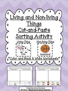 Students sort and match picture with labels into two categories to show what they have learned about Living and Non-living things. Help students work on their fine motor skills by using this cut-and-paste activity! $ #teacherspayteachers #MagnifyingtheScienceClassroom