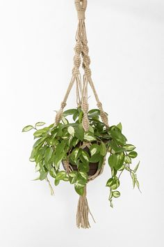 Magical Thinking Hand-Knotted Hanging Plant Holder - Urban Outfitters