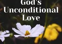 10 Bible Verses To Remind Us of God's Unconditional Love, Regular Update Bible Verses, Short Bible Verses, Must Read and Receive Our Blessings in Our Life. Short Bible Verses, Powerful Bible Verses, Psalm 109, Psalms, Gods Glory, How He Loves Us, Worship Songs, Son Of God, Gospel Music