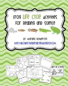 Lil Country Librarian: Frog Life Cycle Activities for Reading and Science Kindergarten Lesson Plans, Kindergarten Science, Science Classroom, Teaching Science, Science Education, Science For Kids, Science Activities, Science Ideas, Preschool Ideas