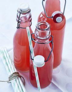 Rabarbersaft er den perfekte sommerdrik, og i denne opskrift får de skønne rabarber følgeskab af frisk ingefærsmag.