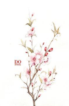dodolog 的插画 桃 花@戎兵采集到小花(305图)_花瓣插画/漫画