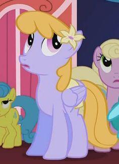 List of ponies My Little Pony List, My Little Pony Friendship, Mickey Mouse Cartoon, Mlp Pony, Twilight Sparkle, Fluttershy, Rainbow Dash, Equestria Girls, Princess Peach