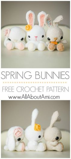 Better Pictures - Spring Sweet Bunny [Amigurumi Free Pattern] To anybody wanting to take better photographs today Nothing says spring like a kawaii amigurumi bunny! Free pattern & step-by-step tuto Crochet Easter, Easter Crochet Patterns, Crochet Diy, Crochet Amigurumi Free Patterns, Crochet Crafts, Crochet Dolls, Crochet Projects, Crochet Rabbit Free Pattern, Knitting Projects