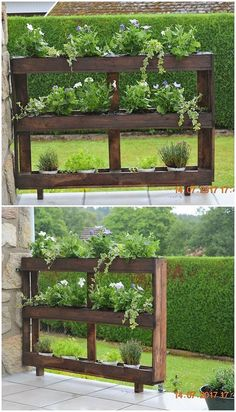 Elegantly and much marvelous designing of planter stand has been done in it with the blend of finest use of wood pallet material. It has been comprised with the equal divisions of the shelves over it that is all positioned in the standing mode.