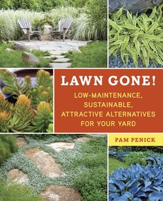Lawn Gone!: Low-Maintenance, Sustainable, Attractive Alternatives for Your Yard - Pam Penick 712