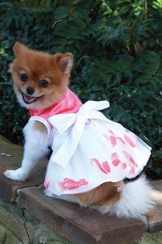 The Flora Flower Petal Dog Dress