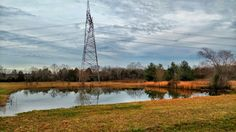 #pond #farm #field #tnbackroads #reflection #trees #midtn #nature_photography #naturelovers #tennesseelandscape #naturegram #rutherfordcounty #natureshots #nature_shooters #nature_obsession #countrygirl #cowgirl #countrysidelife