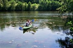 7 Fun and Free Things to do in Ann Arbor this Summer: Explore Gallup Park