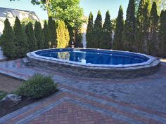 6' foot shrubs can provide extra privacy for your pool and backyard from your neighbors. #thepoolfactory