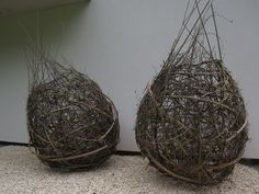 Angela Morley | Made of willow, old man's beard, dogwoods and silver birch they are textural and bold in shape.    They will provide a strong focal point whilst being attractive to nesting birds and will eventually return to nature thus completing an interesting life cycle!