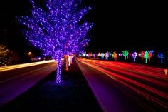15 bright and merry places in DFW to see Christmas lights