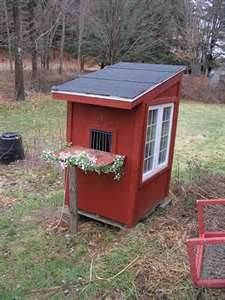 26 Best Pigeon Coops images in 2016 | Chicken roost, Animaux