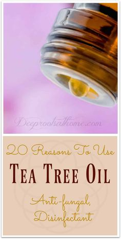 20 Reasons To Use Tea Tree Oil: Anti-fungal, Disinfectant