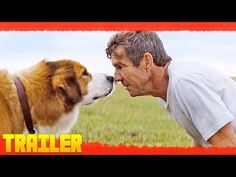 A Dog's Purpose (2017) Primer Tráiler Oficial Subtitulado - YouTube