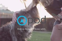 pod - GPS tracking device for your pet