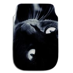 Housse smartphone chat collection chat noir isis