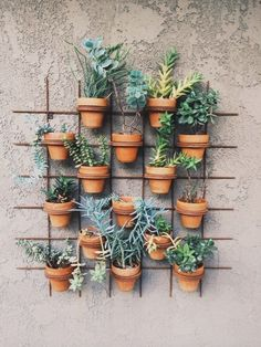 Terracotta pots on the wall with an iron grid