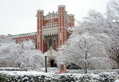Enjoy the snowy Norman day!