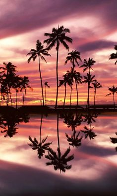 sunset over ala moana beach park honolulu oahu hawaii - Tap to see more amazing reflection wallpapers! - @mobile9 #HawaiiHoneymoonromanticbeautifulplaces
