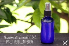 How-to Make Homemade Essential Oil Insect Repellent Spray // Tasty Yummies