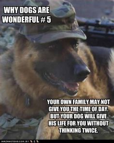 Oh this makes me sad because it reminds me that tank twinkle and Oreo would give their life for me. They might only be a small part of my life- but to them- I'm their whole life- they are one of the only people that they know and they love me. Thank you- my dogs.