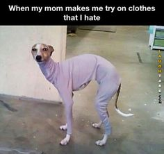 When my mom makes me try on clothes
