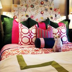 Love the pillows and the pup!  by jamie meares, via Flickr