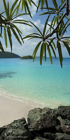 Cinnamon Bay Beach, Saint John, US Virgin Islands.