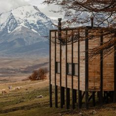 Timber cabins provide guest suites for Patagonia's remote Awasi Hotel