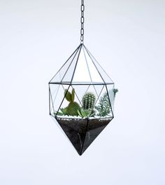 Hanging Glass Terrarium - Large Geometric Planter - Stained Glass Terrarium