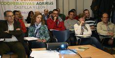Las cooperativas de Castilla y León aprueban la creación de una Organización de Productores Lácteos. http://revcyl.com/www/index.php/economia/item/7144-las-cooperativas-de-casti
