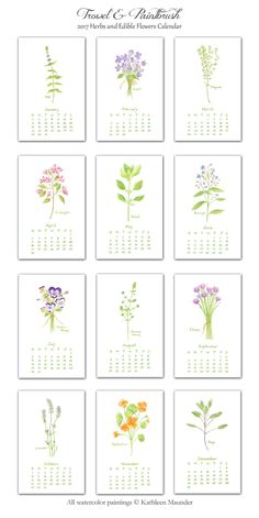 A beautiful calendar for 2017 with illustrated herbs and edible flowers. Twelve delicate botanical watercolor images to enjoy throughout the year. I print the calendar with love and care in my studio