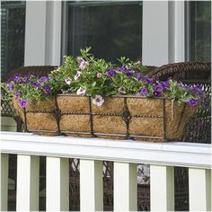 10 front porch flower box ideas you can install today for great curb appeal! Horse trough planters, deck railing planters, and raised garden planter. Plants For Planters, Raised Garden Planters, Planter Box With Trellis, Cool Plants, Outdoor Planters, Shade Plants, Balcony Garden, Hanging Plants, Deck Railing Planters