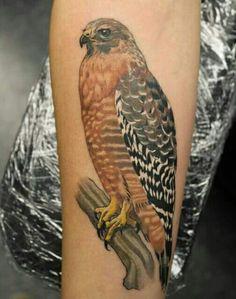 Red Shouldered Hawk Tattoo. Love Becky Ashcraft's work. Blacklist Ink.