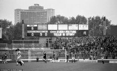 The scoreboard reads 'Every picture tells a story', drawing attention to the fact Chelsea are thrashing Newcastle United in this October 1980 Second Division fixture Chelsea Fans, Chelsea Football, Newcastle, Different Sports, Stamford Bridge, Football Stadiums, Sunderland, London England, Great Britain