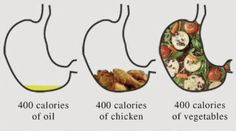 Oil vs chicken vs vegetable in the stomach - what really fills you up?