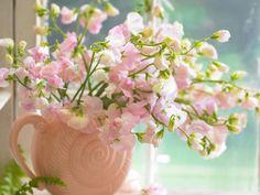 розы в вазе - Поиск в Google