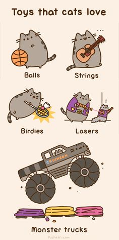 Toys That Cats Love ~ by Pusheen