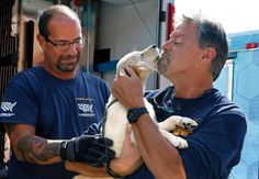 Humane Society of the United States animal rescue team member Rich Crino, left, hands off a happy 4 month old Donggi, into the hands of David Stroud of the Cashiers/Highlands Humane Society animal rescue chapter Saturday, October 1, 2016 during a hand-off in Cary, NC. Thirty one dogs were rescued from a South Korean dog farm where they were raised for food and then flown to the United States. The dogs arrived at RDU Saturday and were distributed to several rescue shelters from the NC…