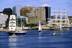 Featival of Tall Ships in Halifax Nova Scotia...amazing to see in person.