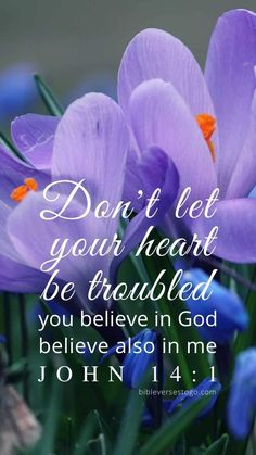 Bible Verses To Go - Inspirational Verse of the Day Scripture Images, Bible Words, Bible Verses Quotes, Bible Scriptures, Bible Prayers, Biblical Verses, Prayer Verses, Prayer Quotes, Spiritual Quotes